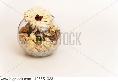 Still-life. A Round Glass, Transparent Vase Filled With Tree Bark, Dried Flowers, Shells
