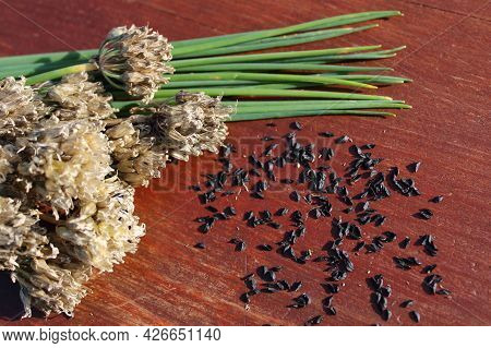 Chives And Chives Seeds On Brown Boards