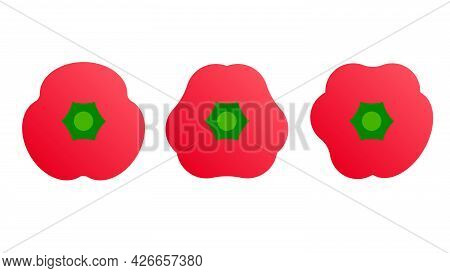 Paprika. Minimal Style Red Bell Pepper Set. Minimalistic Red Pepper Collection, Top View. Abstract G