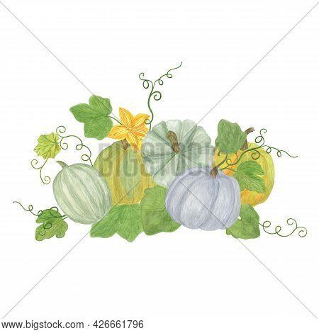 Autumn Ripe Pumpkins Arrangement Watercolor Illustration, Green Orange Seasonal Fall Holidays Floral