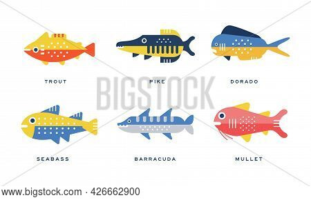 Freshwater And Saltwater Fish As Seafood Depicted In Flat Style Vector Set