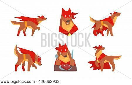 Muscular Brown Dog In Superhero Red Cloak As Guard Vector Set