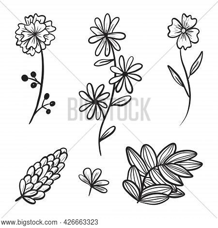 Big Set Of Vector Doodle Icons. Collection Of Branches And Twigs With Leaves, Flower Buds And Petals