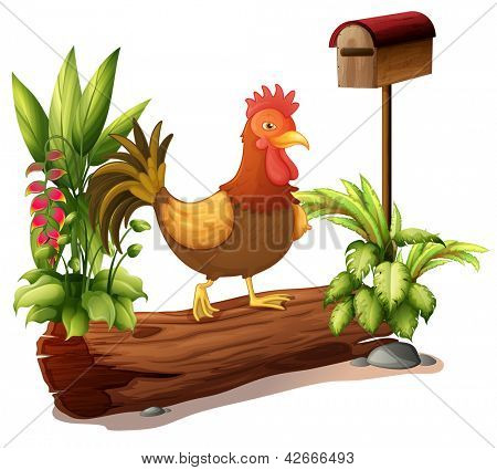 Illustration of a rooster above a trunk on a white background