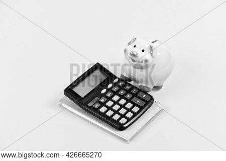 Saving Money. First Salary. Bookkeeping. Financial Report. Family Budget Management. Business Start