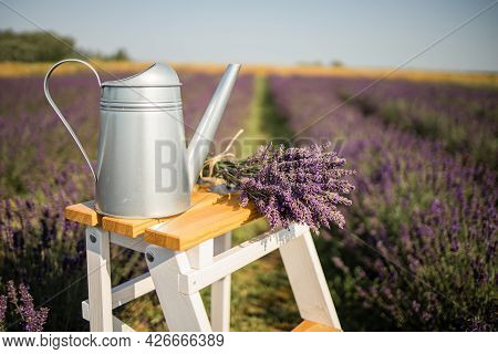 Lavender Bouquet On Wooden Table, On Lavender Field Background