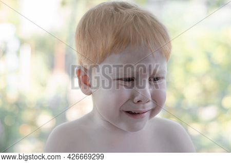 The Little Red-haired Boy Is Crying. A 4 Year Old Boy Is Lost In The Park And Is Crying.