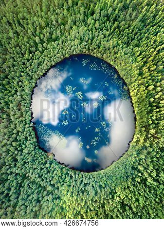 Vertical Earth Lake Surrounded By Alpine Forest. Eco Image With Cloud Reflection Resembling The Plan