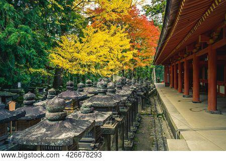Kasuga Taisha, A Shrine Of One Thousand Lantern At Nara, Kansai, Japan