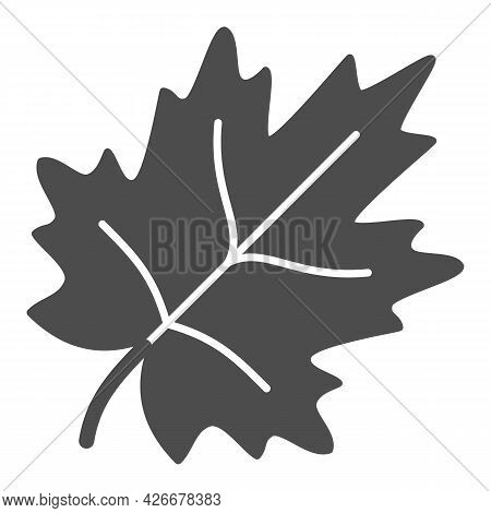 Maple Leaf Solid Icon, Trees And Leaves Concept, Leaves Of Maple Tree Vector Sign On White Backgroun