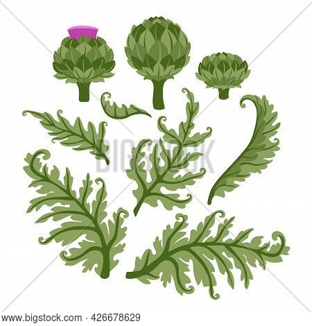 A Set Of Artichoke Flowers With Green Leaves, A Floral Decorative Elements For Pattern, Ornament, A