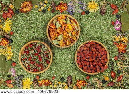 Set Of Spices, Dried Herbs And Seeds With A High Content Of Antioxidants, Minerals And Vitamins. Row
