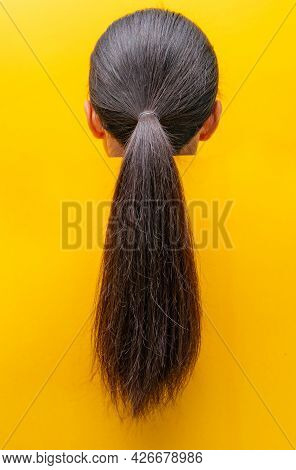 Back View Ponytail Damaged Hair Isolated On Yellow Background. Dry And Brittle Hair Problem. Black L