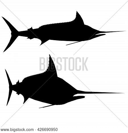 Silhouette Of A Fish With A Pointed Nose Isolated On A White Background. Side View. Vector Illustrat
