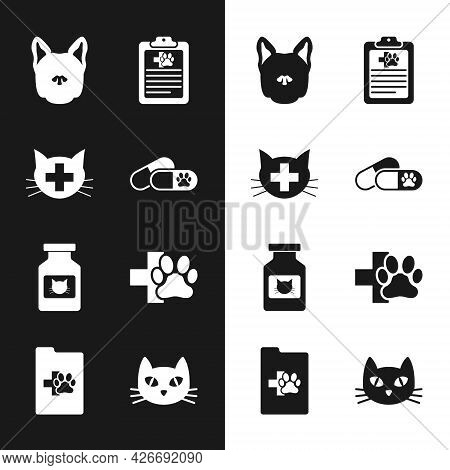 Set Dog And Pills, Veterinary Clinic, , Clinical Record Pet, Cat Medicine Bottle And Icon. Vector