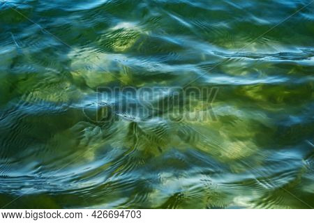 Green And Turquoise Sea Surface With Transparent Silhouettes Of Jellyfish In Water. Beautiful Bright