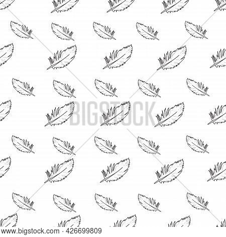 Vector White Background Tropical Birds, Parrots, Macaw, Exotic Cockatoo Birds Feathers. Seamless Pat