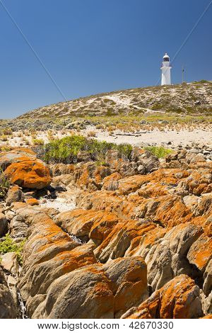 Lighthouse And Rocks