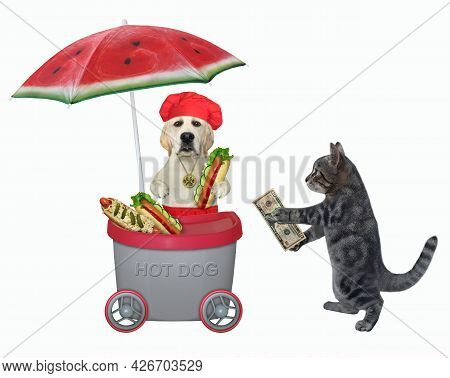 A Gray Cat Buys A Hot Dog In A Grey Mini Movable Kiosk. White Background. Isolated.