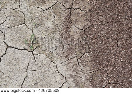 Cracked Dry Earth Gradually Turns Into Fine Sandy Soil. Cracks And Sand. The Grass Grows On Cracked