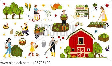 Garden, Farm And Agriculture. Woman And Man Cares For Garden, Potted Plant, Grows Organic Vegetables
