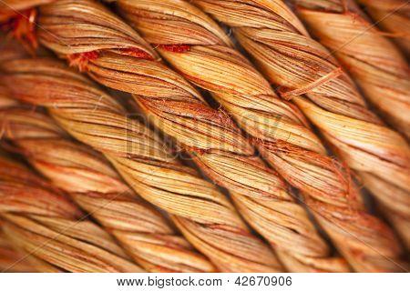 Diagonal Twisted Wooden Fibres