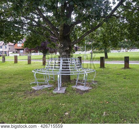 A Circular Bench Around The Trunk Of A Tree