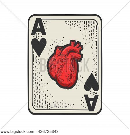 Ace Of Hearts With Human Anatomical Heart Color Line Art Sketch Engraving Vector Illustration. T-shi