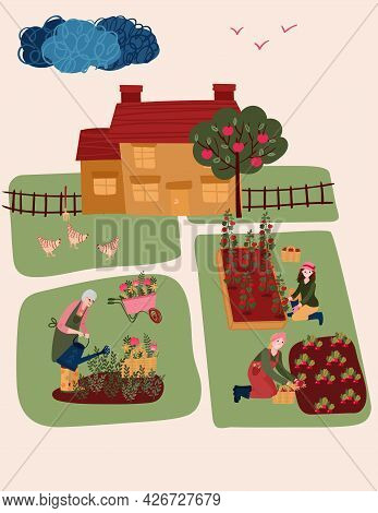 Senior Woman Watering Flowers. Old Woman Cultivating Garden. Female Hobby Gardening In House Yard. F