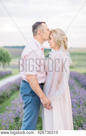 Mature Romantic Loving Couple Walking In Lavender Field. Dreamy Happy Caucasian Middle Aged Couple I