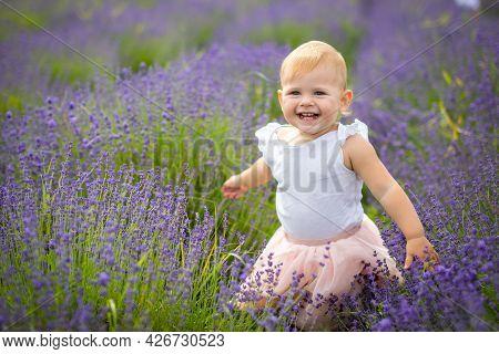 Smiling Baby Girl In Pink Dress In A Lavender Field In Czech Republic
