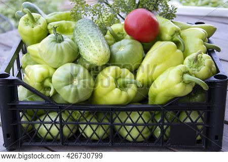 Vegetables In A Box Close-up. Fresh Peppers, Cucumbers And Tomatoes In A Box On A Wooden Background.