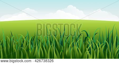 Vector Horizontal Green Summer Landscape With Grass. Sunny Idyllic Spring Background With Green Mead