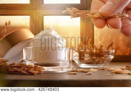 Natural Moisturizing Cream With Oat Extract In Glass Jar On Wooden Table And Hand With Spike With Wi