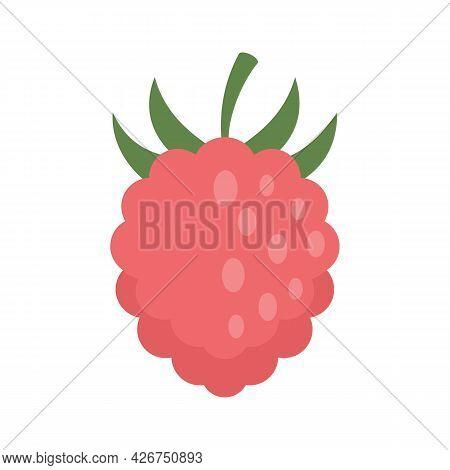 Raspberry Fazz Icon. Flat Illustration Of Raspberry Fazz Vector Icon Isolated On White Background