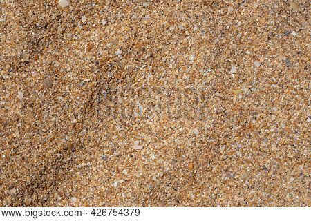 Coarse Sand From Seashells. Texture, Template For Text. Natural Summer Background.