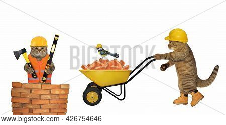 A Beige Cat Builder In A Construction Helmet Pushes A Wheel Barrow Full Of Red Bricks. White Backgro