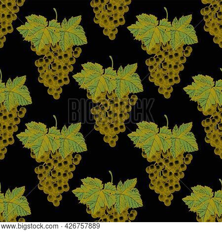 Green grapes seamless pattern on a black background. A bunch of white grapes with leaves. Vintage engraving color stylized drawing.
