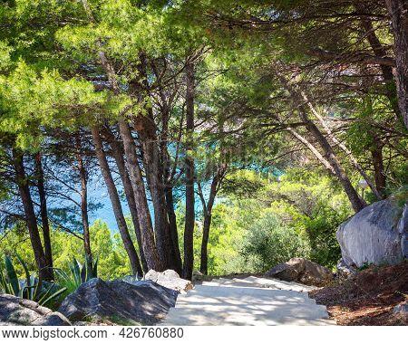 Croatia, The Coast Of Dalmatia, The Resort Town Of Brela. Summer Seascape With Pine Trees And A Stai
