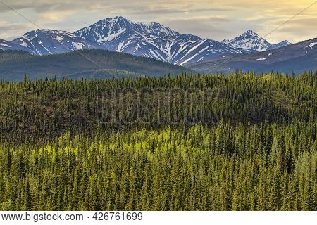 Scenic Landscape Of The Alaska Frontier, Green Forests And Majestic Mountain Ranges.
