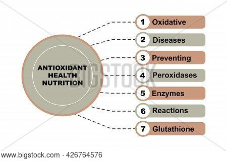 Diagram Concept With Antioxidant Health Nutrition Text And Keywords. Eps 10 Isolated On White Backgr
