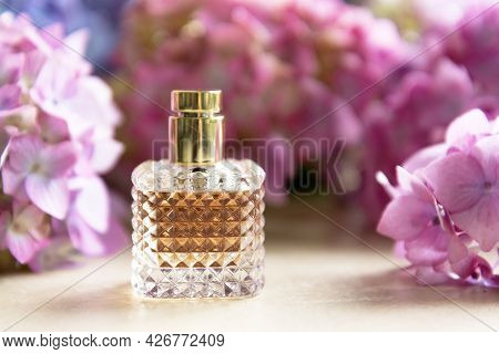 Perfume Bottle And Live Pink And Blue Hydrangea Flower Background. Beauty And Wellness