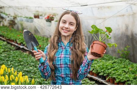 Lets Work. Flowers In Garden. Daily Chores. Flower Care. Horticulture.