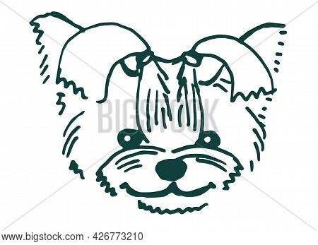 Cute Dog Face, Painted In Black Line, Isolated On A White Background. Dwarf Yorkshire Terrier