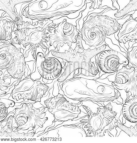 Marine Seamless Pattern From Hand Drawn Spiral Spiked Sea Shells And Starfish With Waves. Nautical V