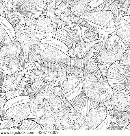 Marine Seamless Pattern From Hand Drawn Spiral Spiked Sea Shells And Starfish. Nautical Vector Patte