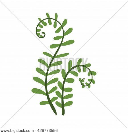 Simple Curved Fern Twig With Leaves Vector Illustration