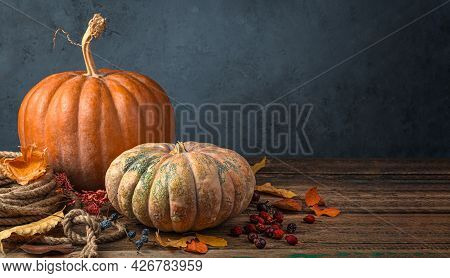 Festive Autumn Background With Pumpkins, Foliage And Berries On A Dark Blue Background. The Concept