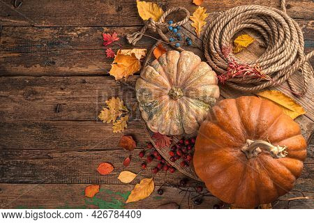 Festive Autumn Background Of Pumpkins, Berries And Foliage On A Brown Wooden Background. The Concept