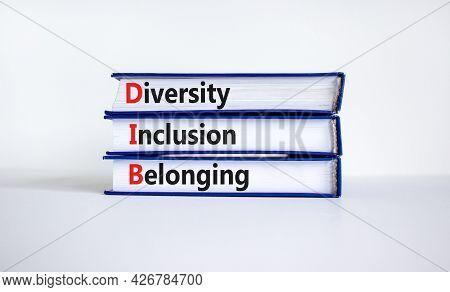 Dib, Diversity, Inclusion And Belonging Symbol. Books With Words Dib, Diversity, Inclusion And Belon